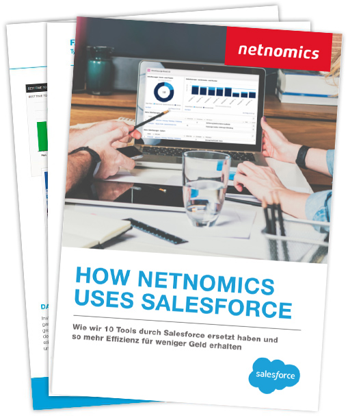How netnomics uses Salesforce